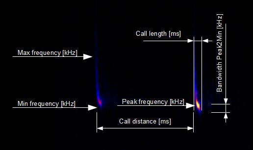 Bat call parameters — BatExplorer 2 1 documentation